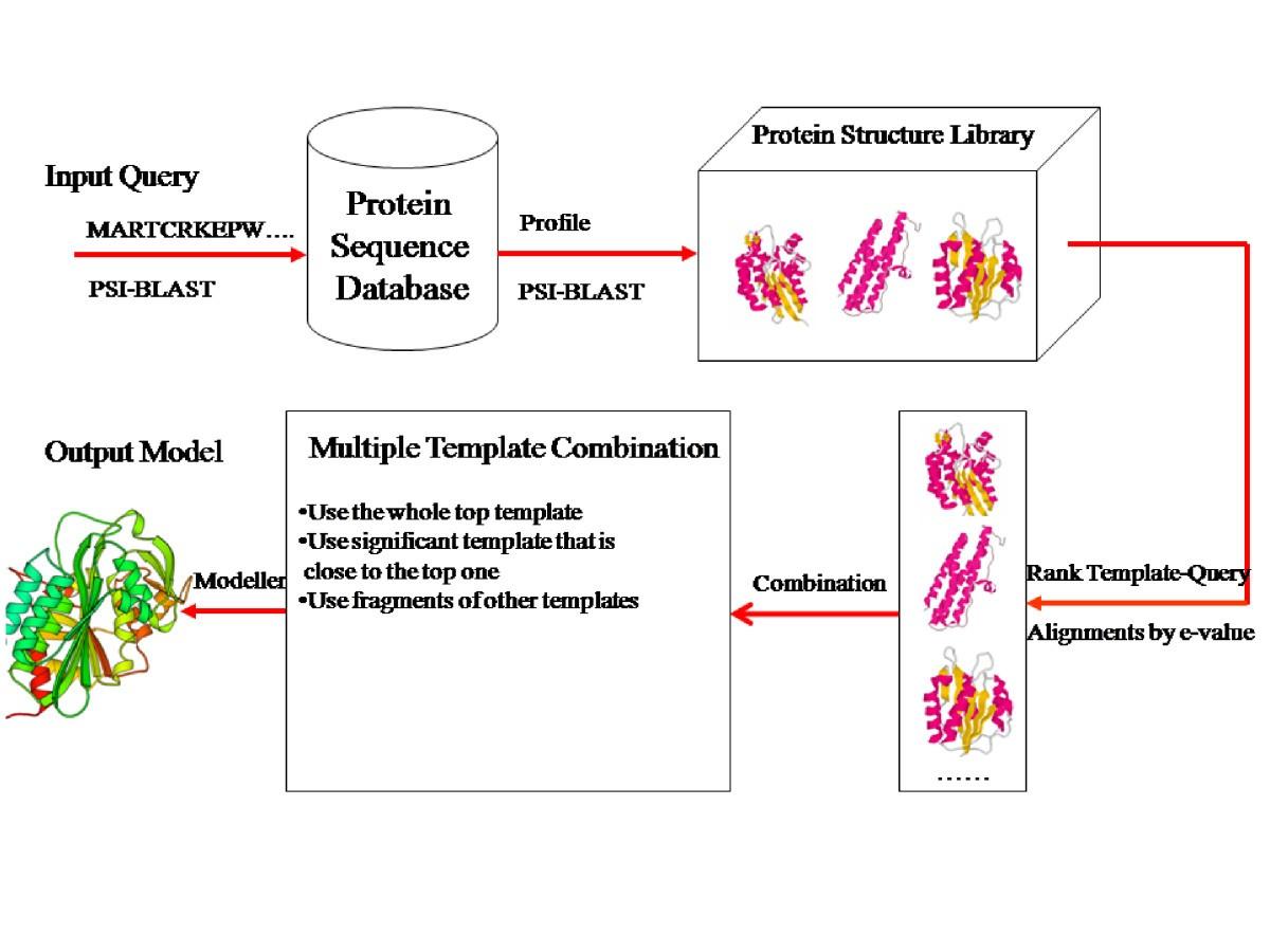 A Multi Template Combination Algorithm For Protein Comparative