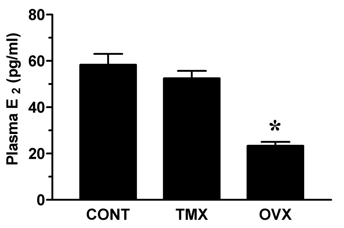 Effects Of Tamoxifen On Vaginal Blood Flow And Epithelial Morphology In The Rat Bmc Women S Health Full Text