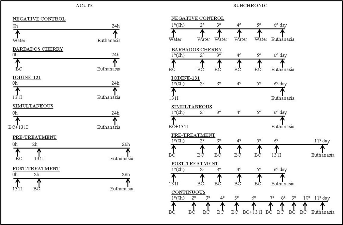 47c76db3d9 Radioprotective effect of the Barbados Cherry (Malpighia glabra L ...