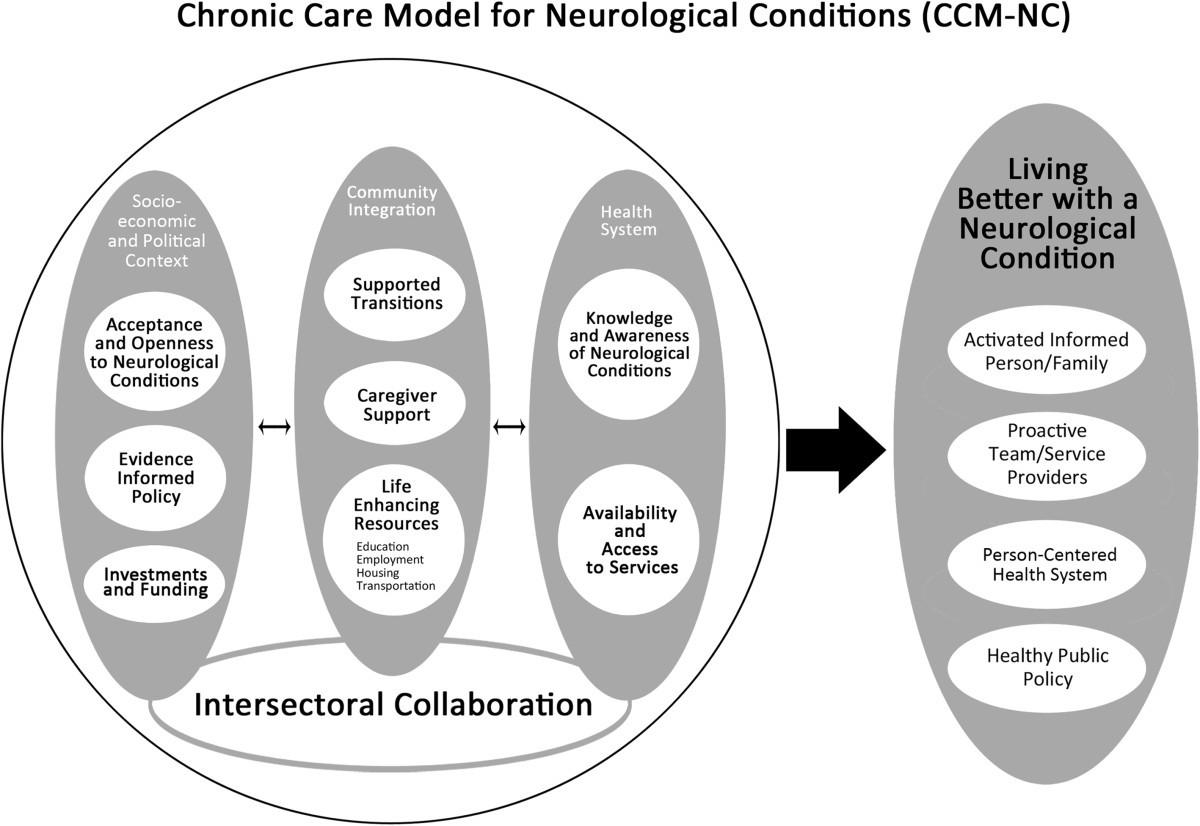 chronic care model nursing