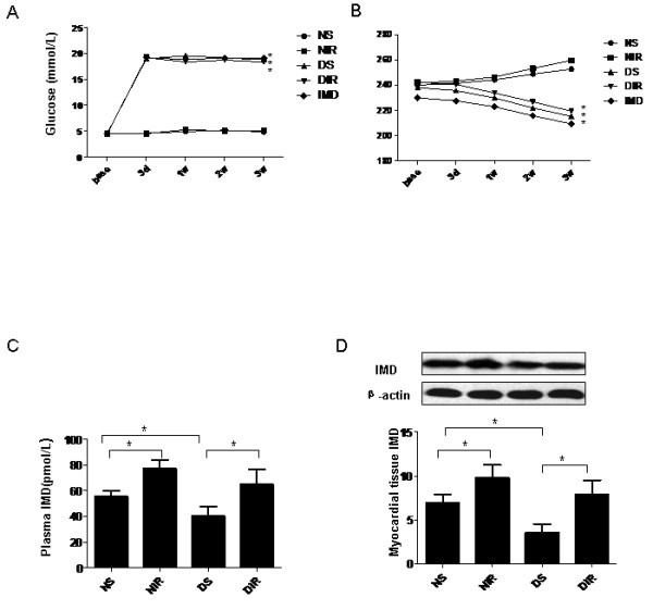 intermedin protects against myocardial ischemia