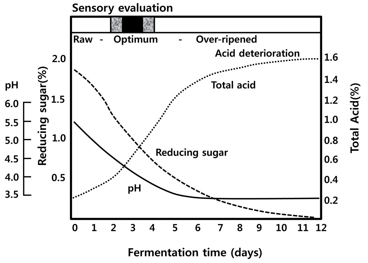 Products Of Fermentation In Nature