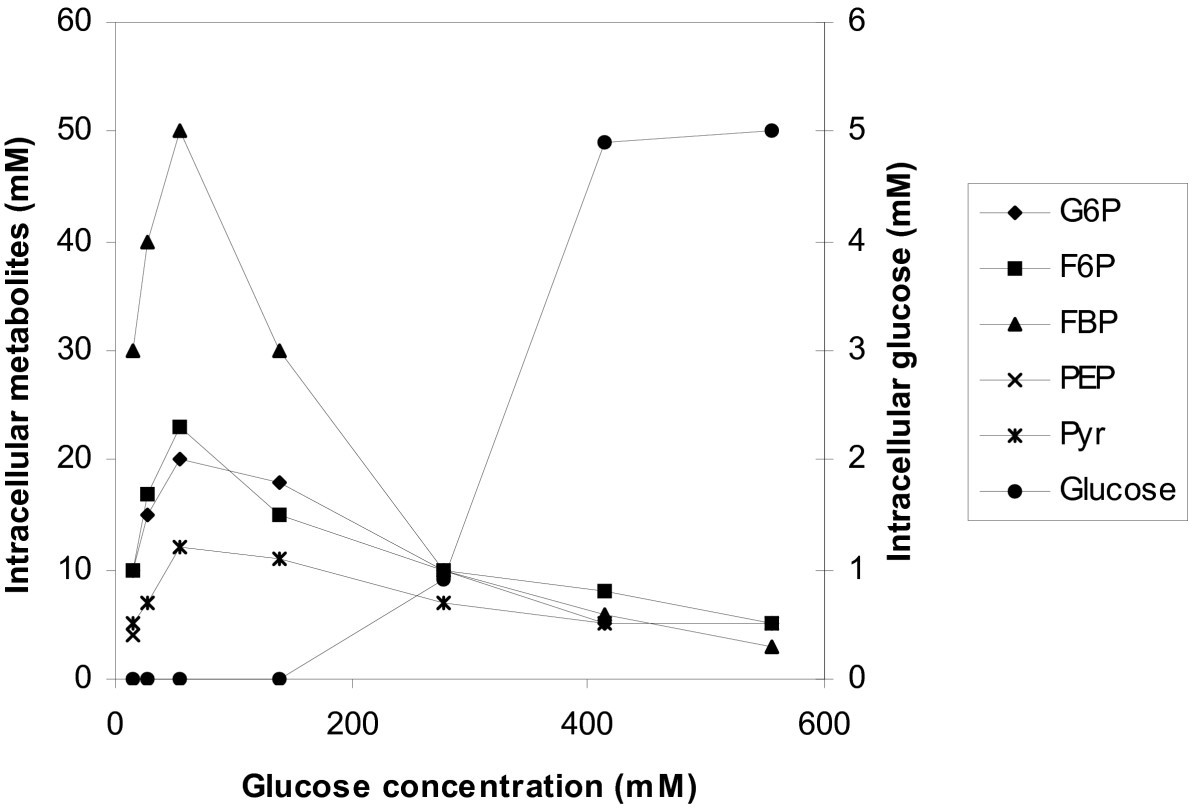 the effect of glucose concentration on anaerobic In anaerobic respiration, one glucose molecule produces a net gain of two atp molecules (four this effect is called the warburg effect for the increased uptake of glucose in tumors various sglt in yeast, ethanol is fermented at high glucose concentrations, even in the presence of oxygen (which.