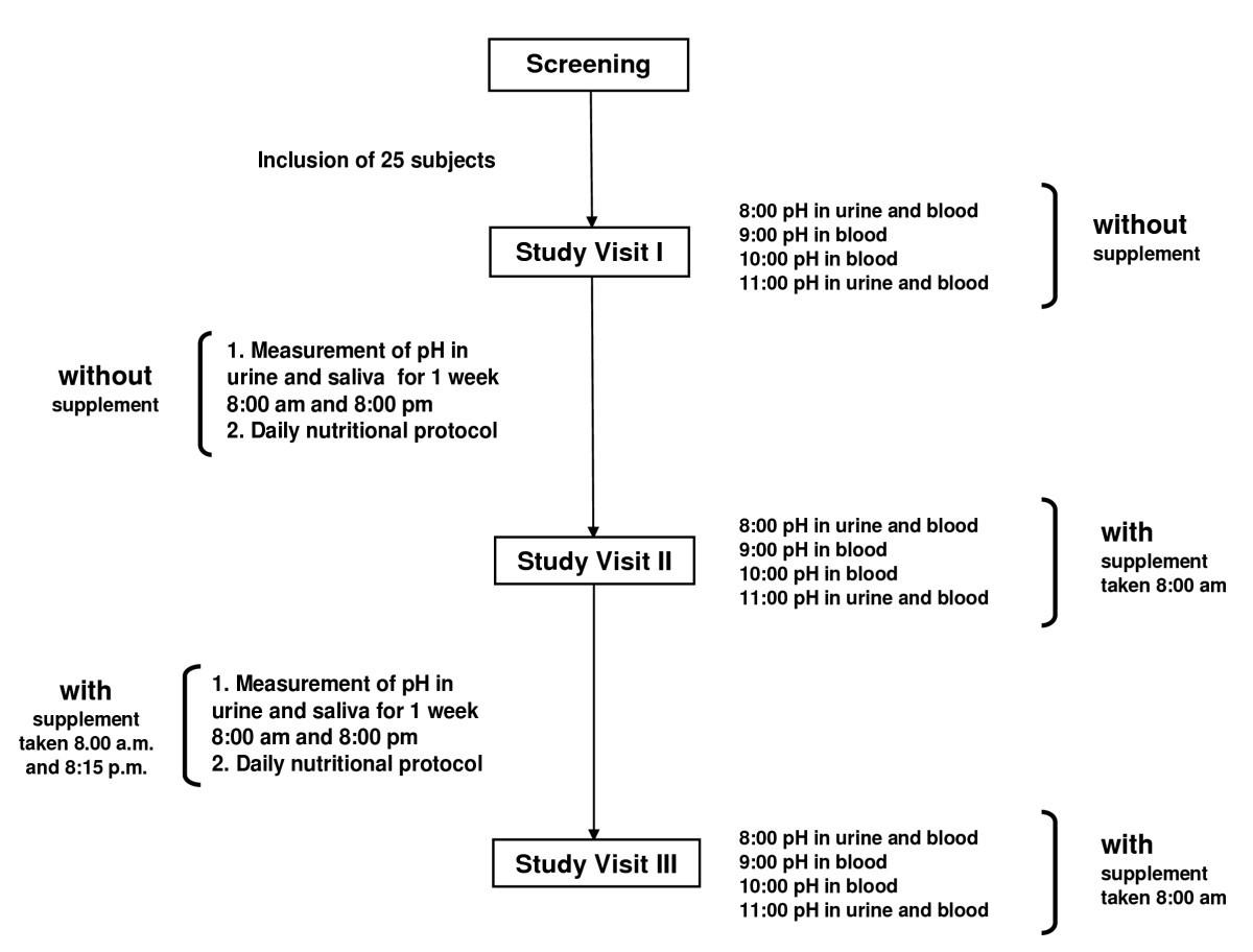 Effect of a supplement rich in alkaline minerals on acid-base