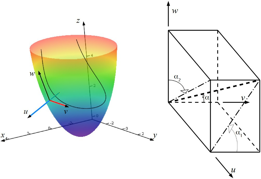 Mathematical model of the anatomy and fibre orientation field of the ...