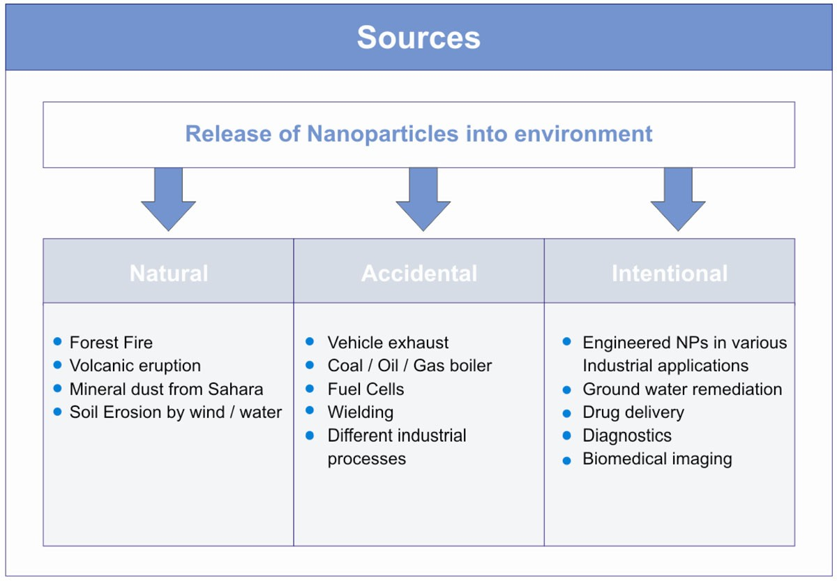 Nanoparticles in the environment: assessment using the causal ...