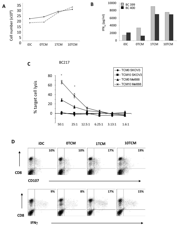 Pro-inflammatory cytokine/chemokine production by reovirus treated