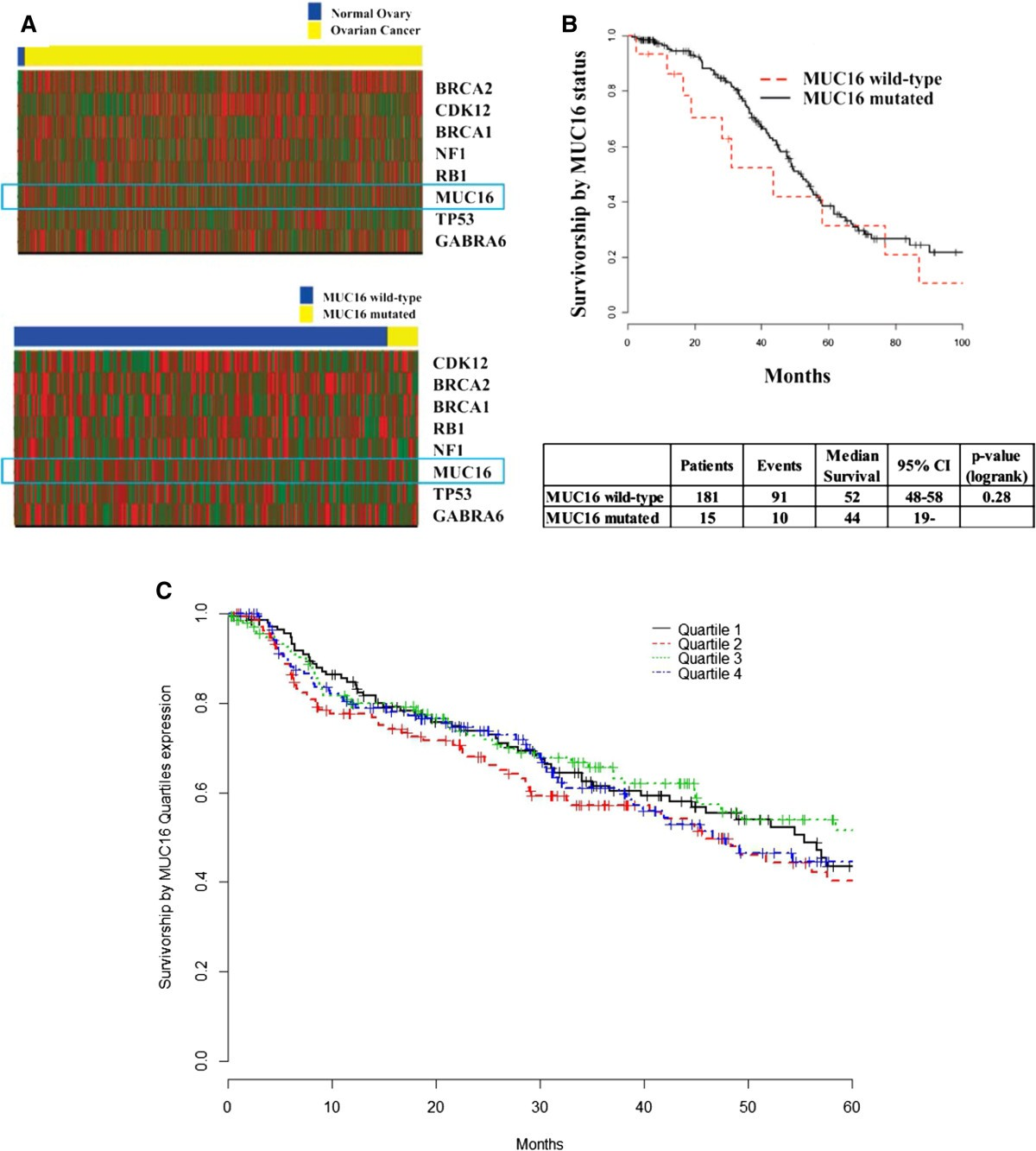 Muc16 Ca125 Tumor Biomarker To Cancer Therapy A Work In Progress Molecular Cancer Full Text