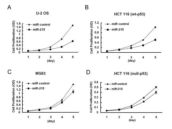 Molecular Mechanism Of Chemoresistance By Mir 215 In
