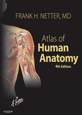 Review Of Atlas Human Anatomy 4th Edition By Frank Netter
