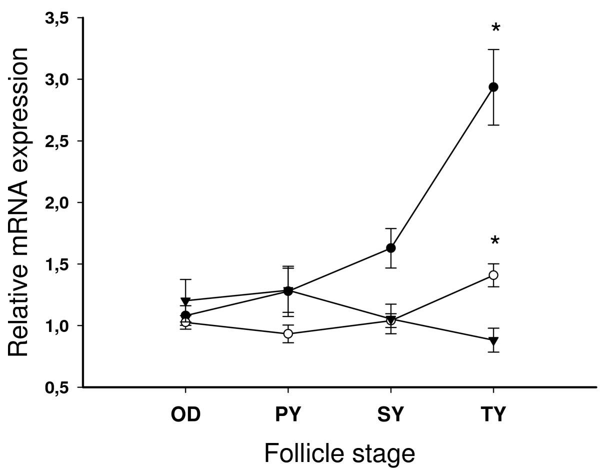 Cloning Of Somatolactin Alpha Beta Forms And The Captive Power Plant Block Diagram Figure 8