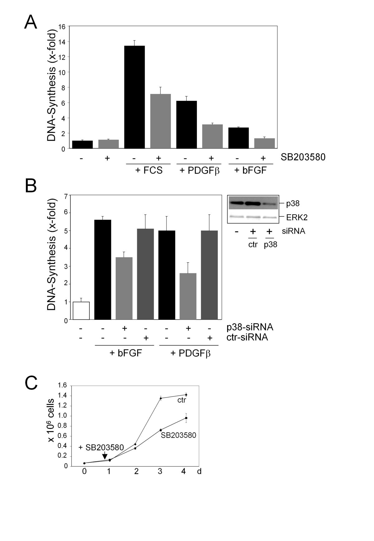 Differential P38 Dependent Signalling In Response To Cellular Stress Lt Pro Dual Function Dark 02r 14 Gr Figure 1