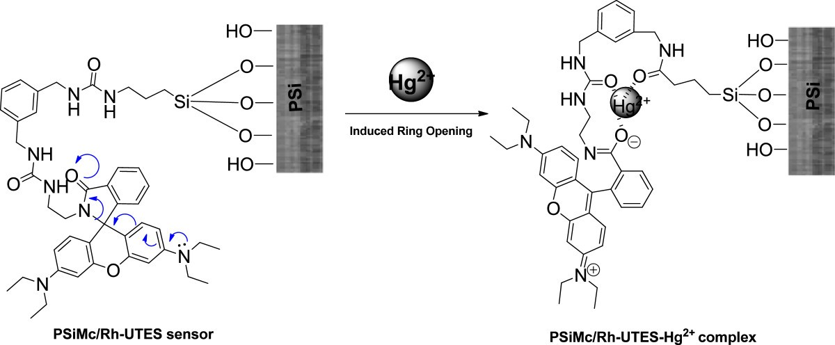A turn-on fluorescent solid-sensor for Hg(II) detection