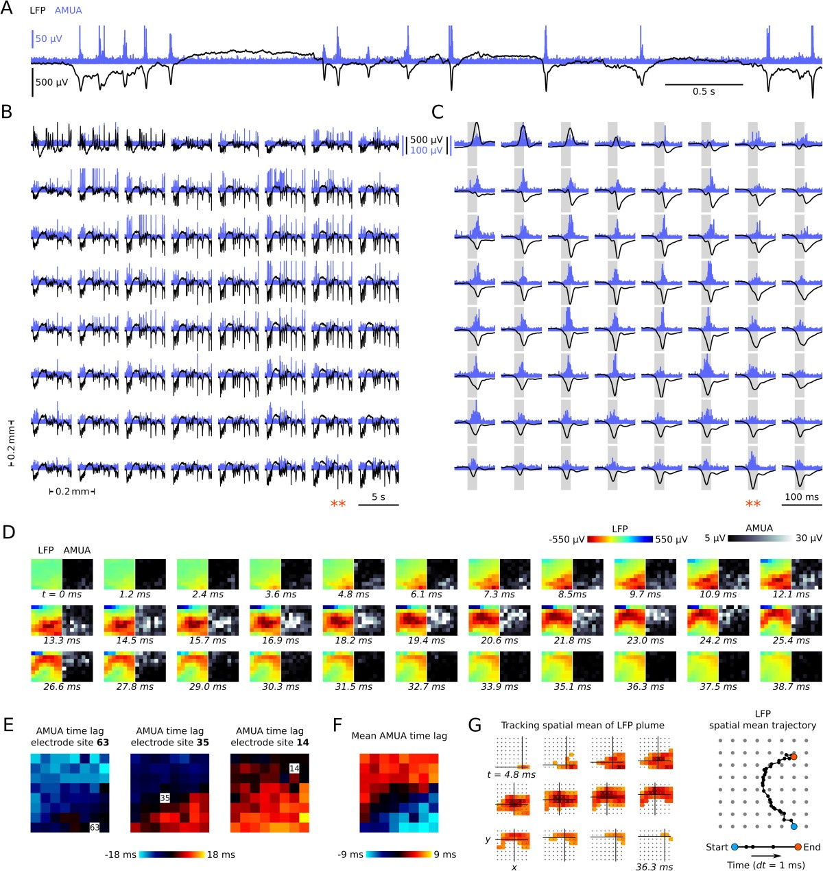 Plumes of neuronal activity propagate in three dimensions through ...