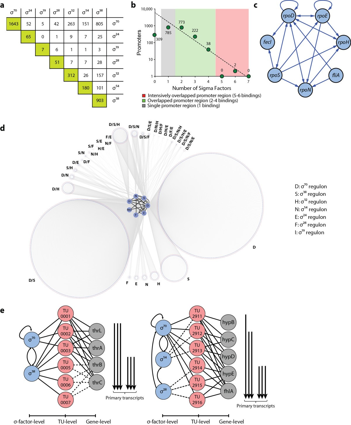 Genome Scale Reconstruction Of The Sigma Factor Network In 12 Annotated Diagram Ultrastructure Escherichia Coli E Figure 2 Properties Reconstructed