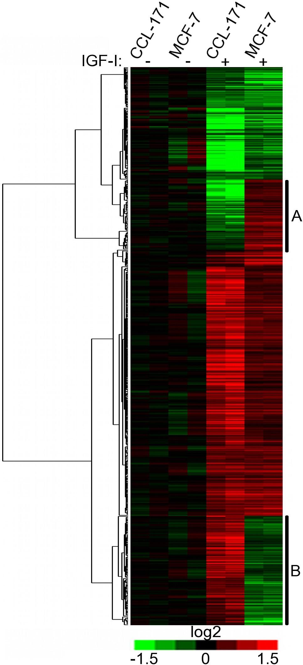 IGF-I induced genes in stromal fibroblasts predict the clinical