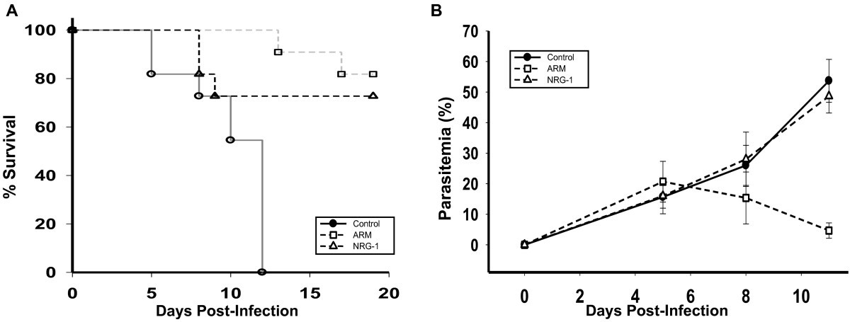 Neuregulin-1 attenuates mortality ociated with experimental ... on
