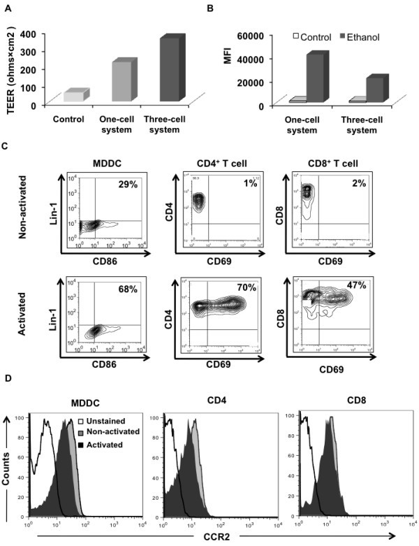 dendritic cell cns recruitment correlates with disease