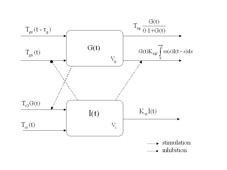 A mathematical model of the euglycemic hyperinsulinemic