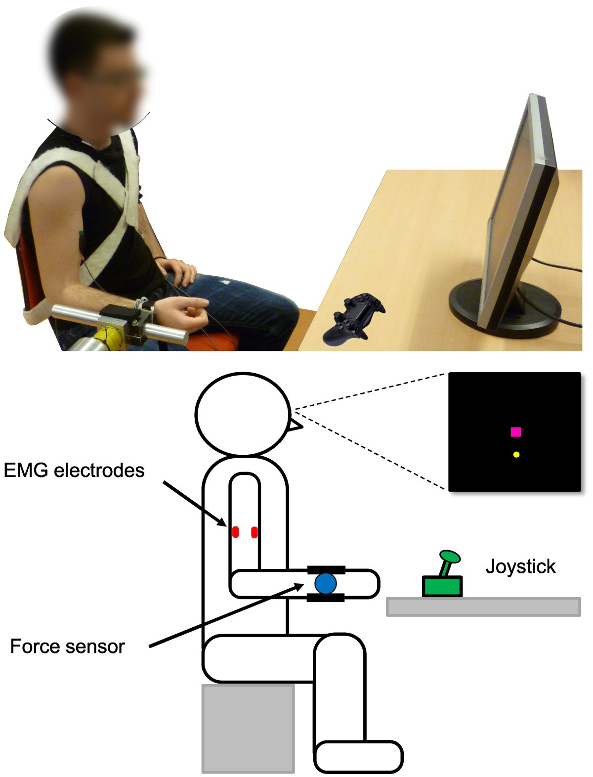 Evaluation Of Emg Force And Joystick As Control Interfaces For Figure 1 Block Diagram The Sensor