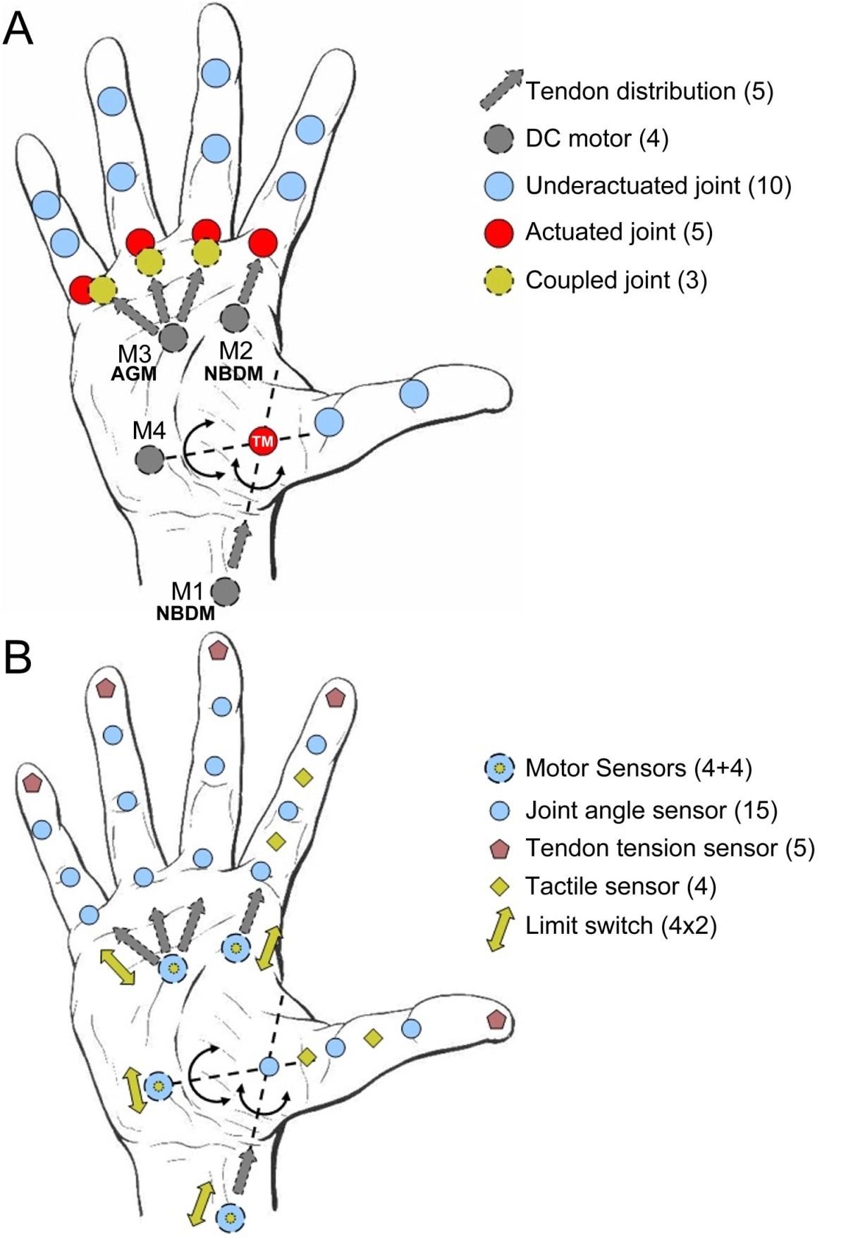d8d53b471b The SmartHand transradial prosthesis | Journal of NeuroEngineering ...