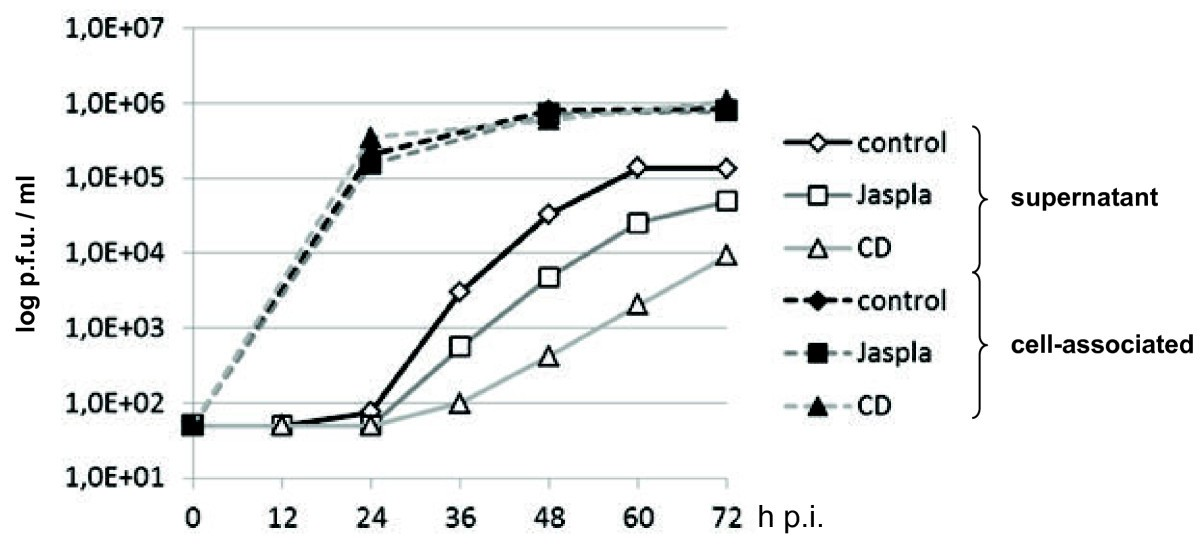 effect of virus on performance of The effects of viruses on grape production and must quality are not fully understood in this study, the evaluation of the impact of different virus infections on performance of the main autochthonous grapevine varieties of mallorca (callet, manto negro and moll) was pursued.