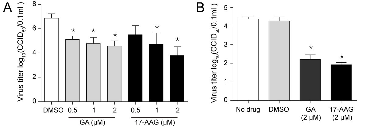 Inhibition of HSP90 attenuates porcine reproductive and respiratory