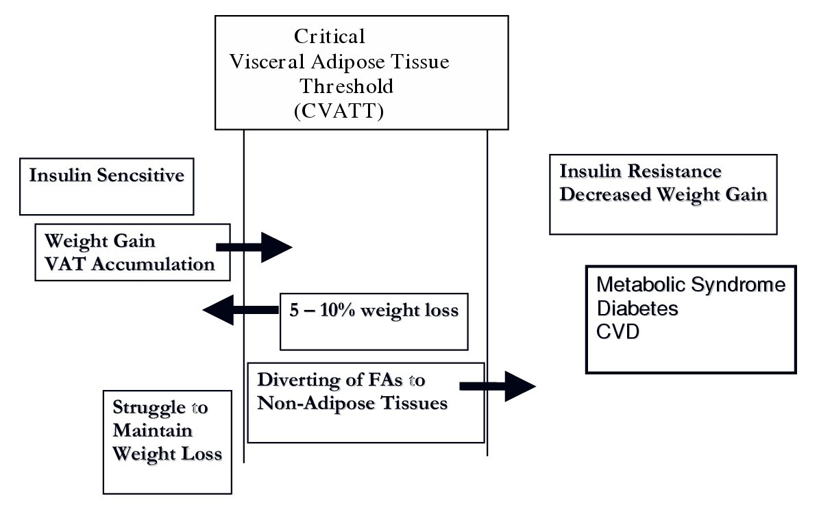 Role Of A Critical Visceral Adipose Tissue Threshold Cvatt In