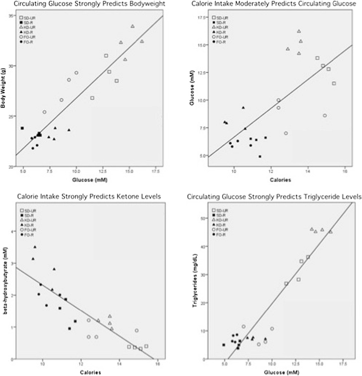 Influence of a ketogenic diet, fish-oil, and calorie restriction on plasma metabolites and ...