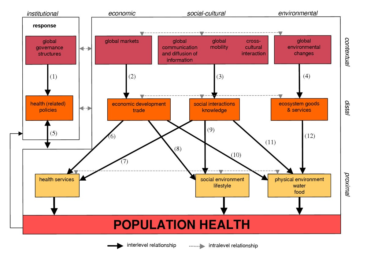 The Health Impacts Of Globalisation A Conceptual Framework