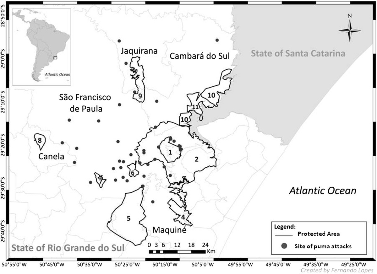 Depredation of domestic herds by pumas based on farmer's ...