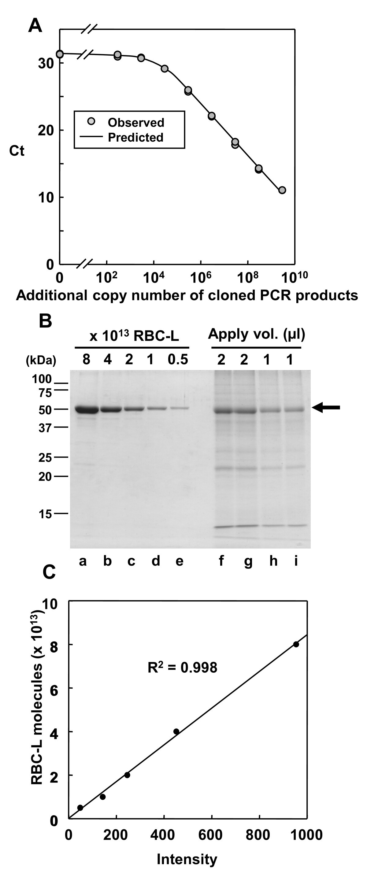 Normalization using ploidy and genomic DNA copy number allows ...