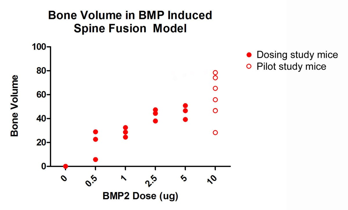 Posterolateral inter-transverse lumbar fusion in a mouse model ...