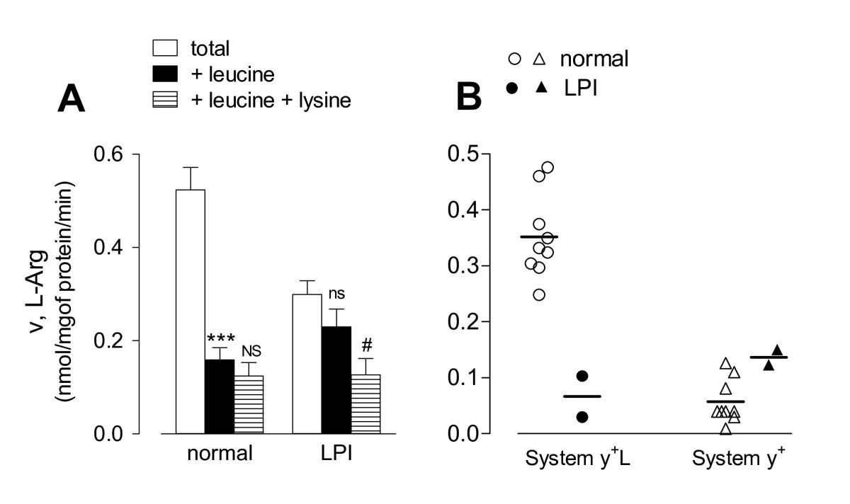 In Lysinuric Protein Intolerance system y+L activity is defective in