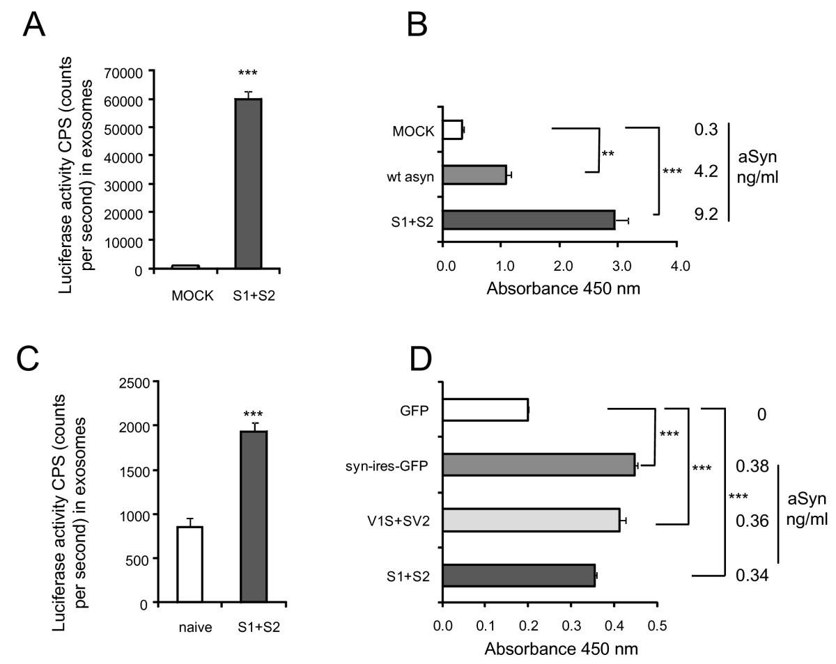 Exosomal Cell To Transmission Of Alpha Synuclein Oligomers Cooper Wiring Diagrams Mini Diagram Jensen Figure 1