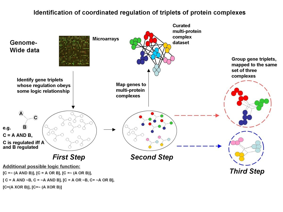 Detecting Coordinated Regulation Of Multi Protein Complexes Using Logic Diagram Xor Figure 1