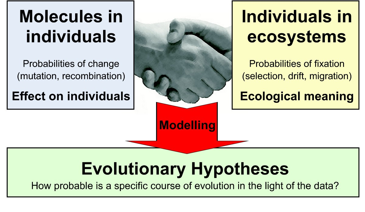 A Framework For Evolutionary Systems Biology Bmc Evolvable Hardware Lab 1 The Book Pages Figure