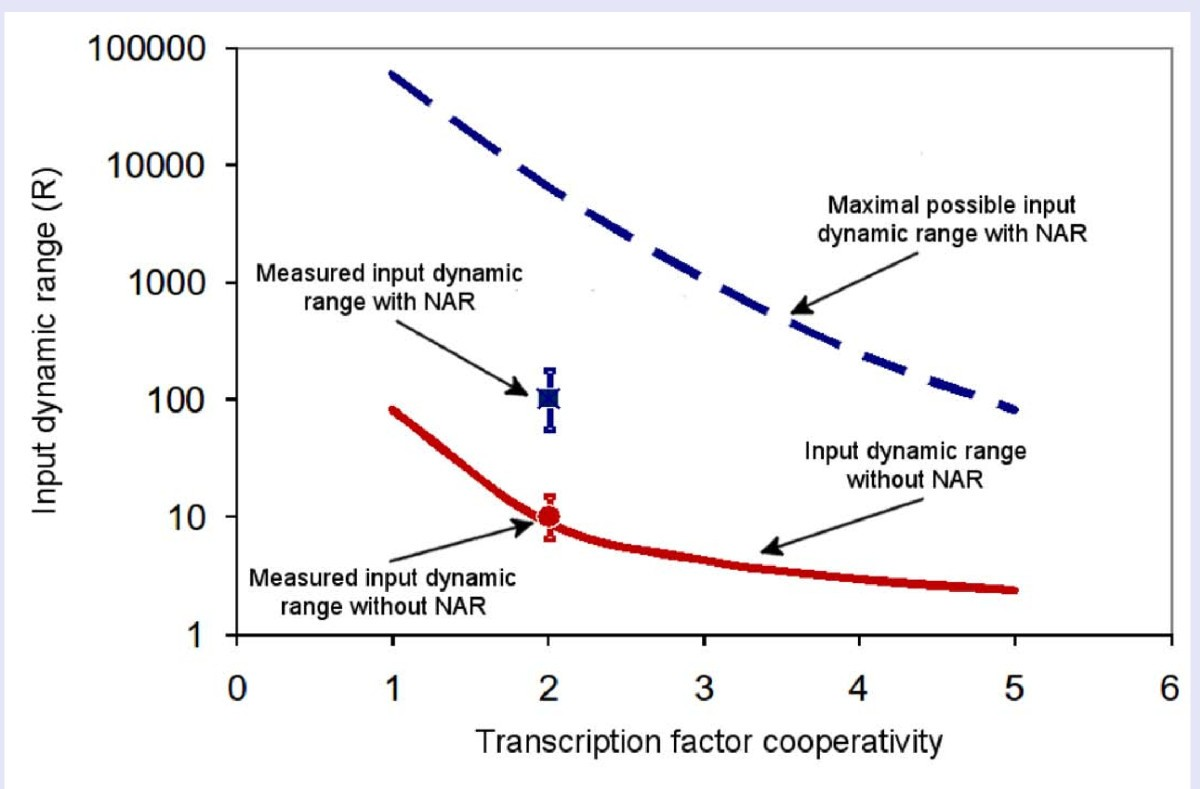 Negative Auto Regulation Increases The Input Dynamic Range Of Text Transcribed For Accessibility Given A Parallel Electric Circuit Figure 5