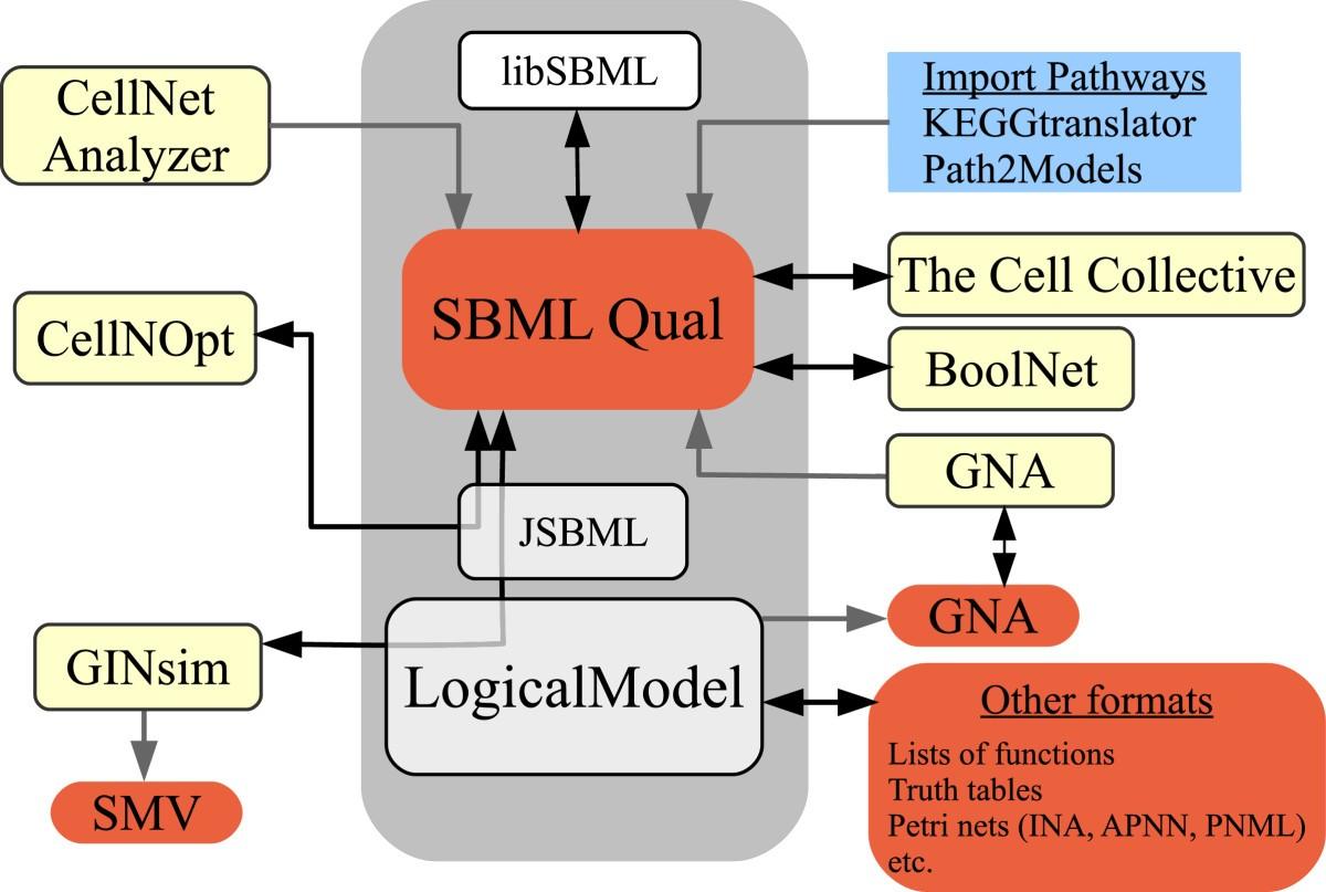 Sbml Qualitative Models A Model Representation Format And Drawing Circuit Diagram License Lgpl Electronic Projects Circuits Figure 7