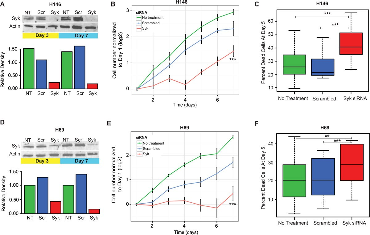 Co Expression Network Analysis Identifies Spleen Tyrosine Kinase Bremis Switch Reversing Wiring Diagram Figure 6