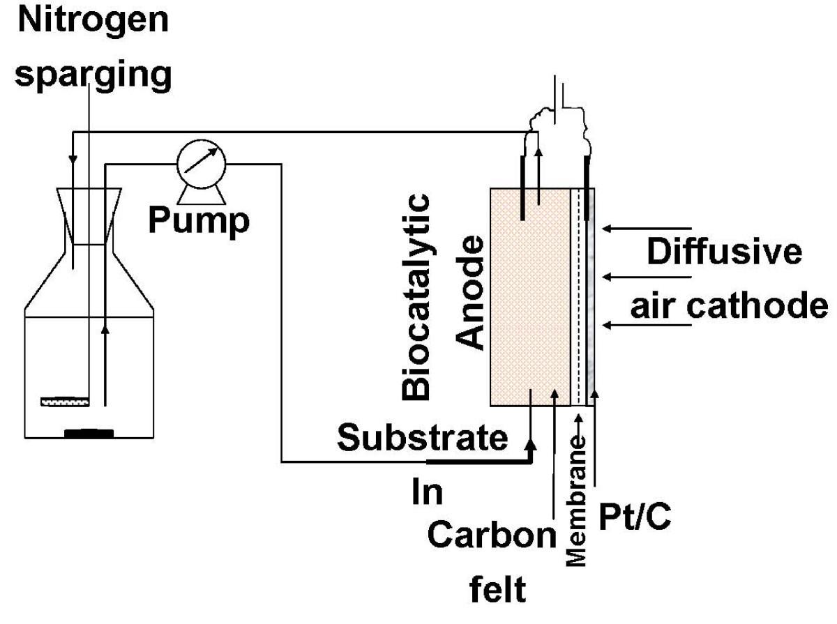 Controlling Accumulation Of Fermentation Inhibitors In Biorefinery Fuel Cells Diagram Standard Cell Figure 1