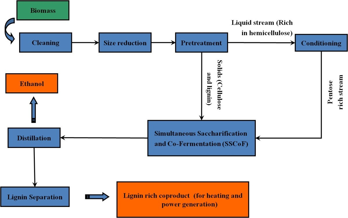 Impact of pretreatment and downstream processing technologies on ...