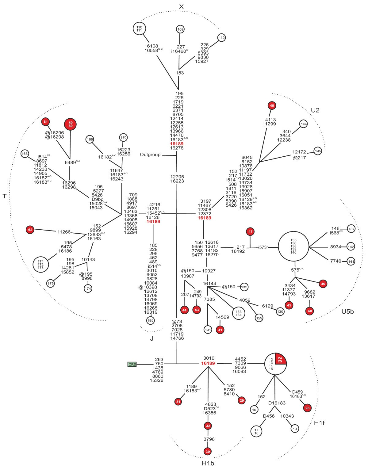 Mitochondrial Dna Sequence Variation In Finnish Patients With Circuit Diagram For Dc Motor Control By A Collins Figure 4