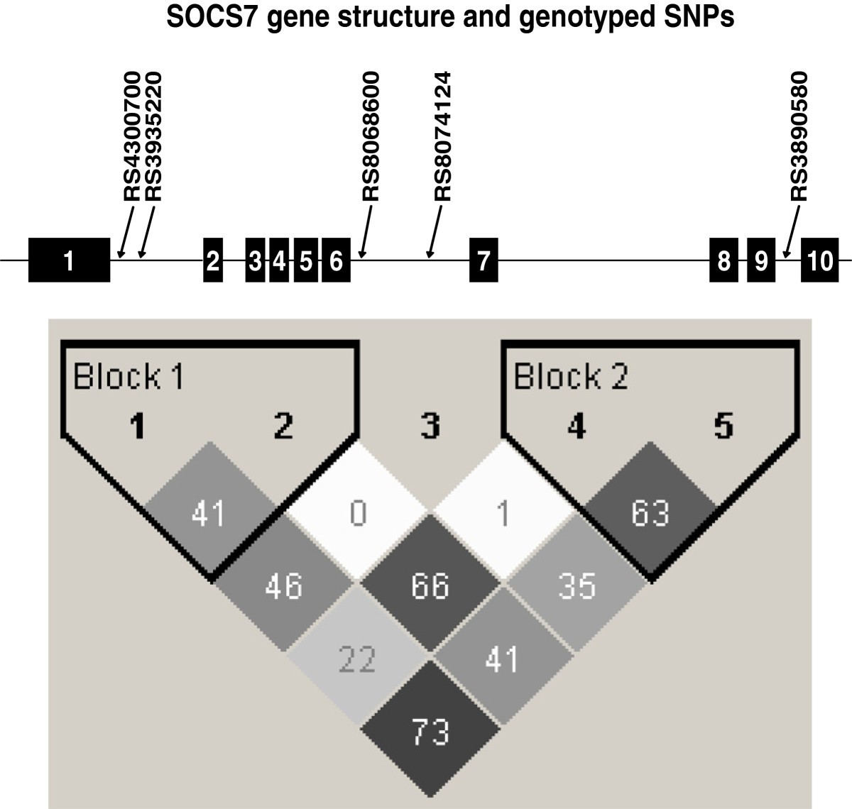 Polymorphisms In The Socs7 Gene And Glucose Homeostasis Traits Bmc Block Diagram Games Figure 1