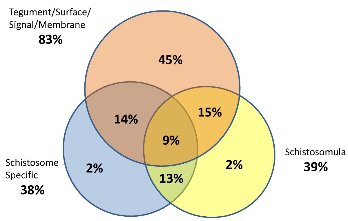 Schistosomiasis vaccine discovery using immunomics parasites figure 2 malvernweather Choice Image