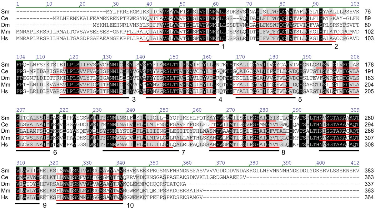 In Silico Analysis Of The Fucosylation Associated Genome Honda 4514 Wiring Diagram Schematic Figure 5