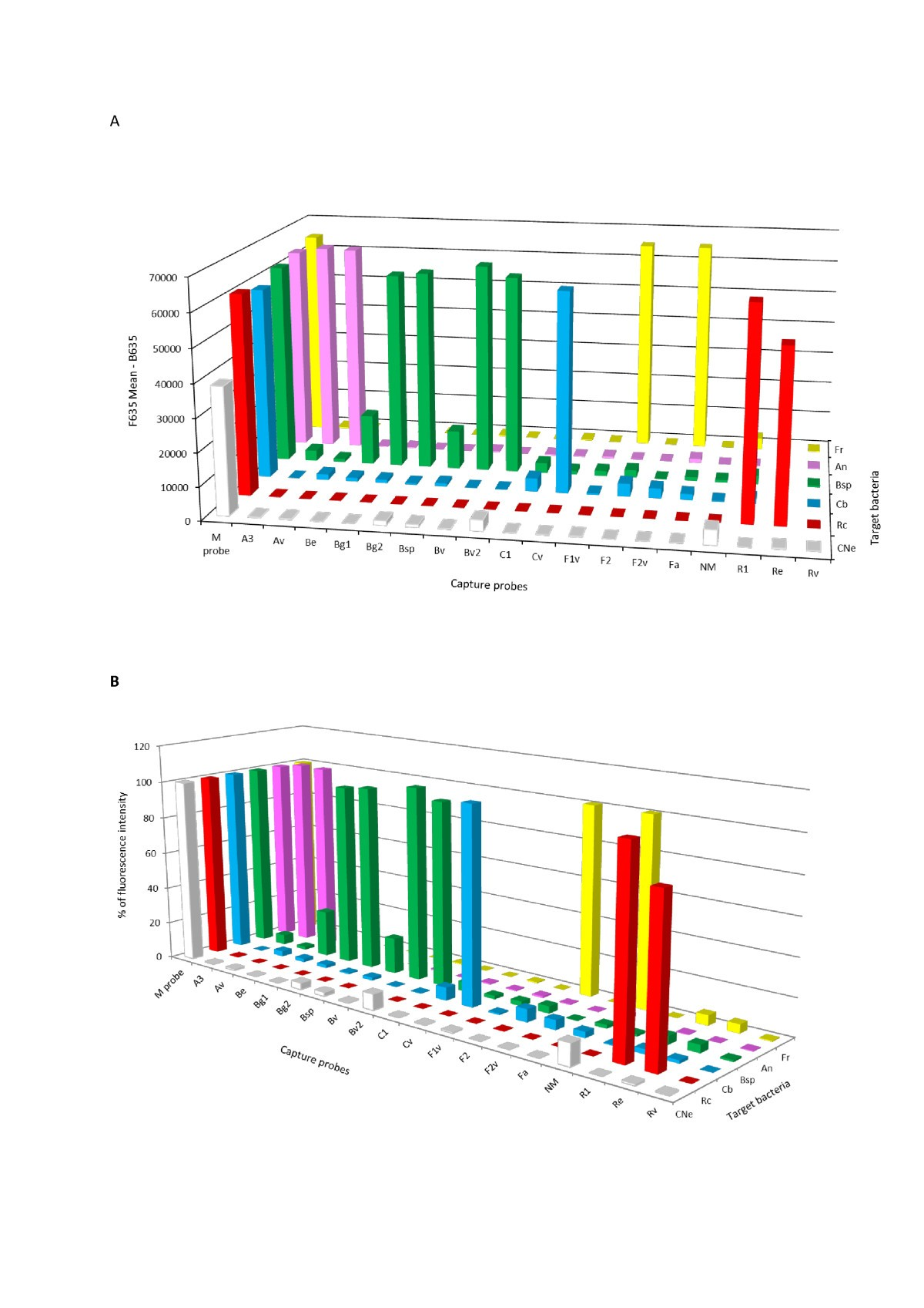 A System To Simultaneously Detect Tick Borne Pathogens Based On The Prokaryotic Cells Ib Biology Ms Elise Figure 1
