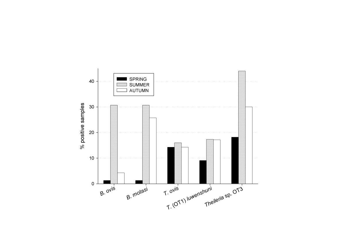 Assessment Of Exposure To Piroplasms In Sheep Grazing Communal Spring Buffer Type F 2 Figure