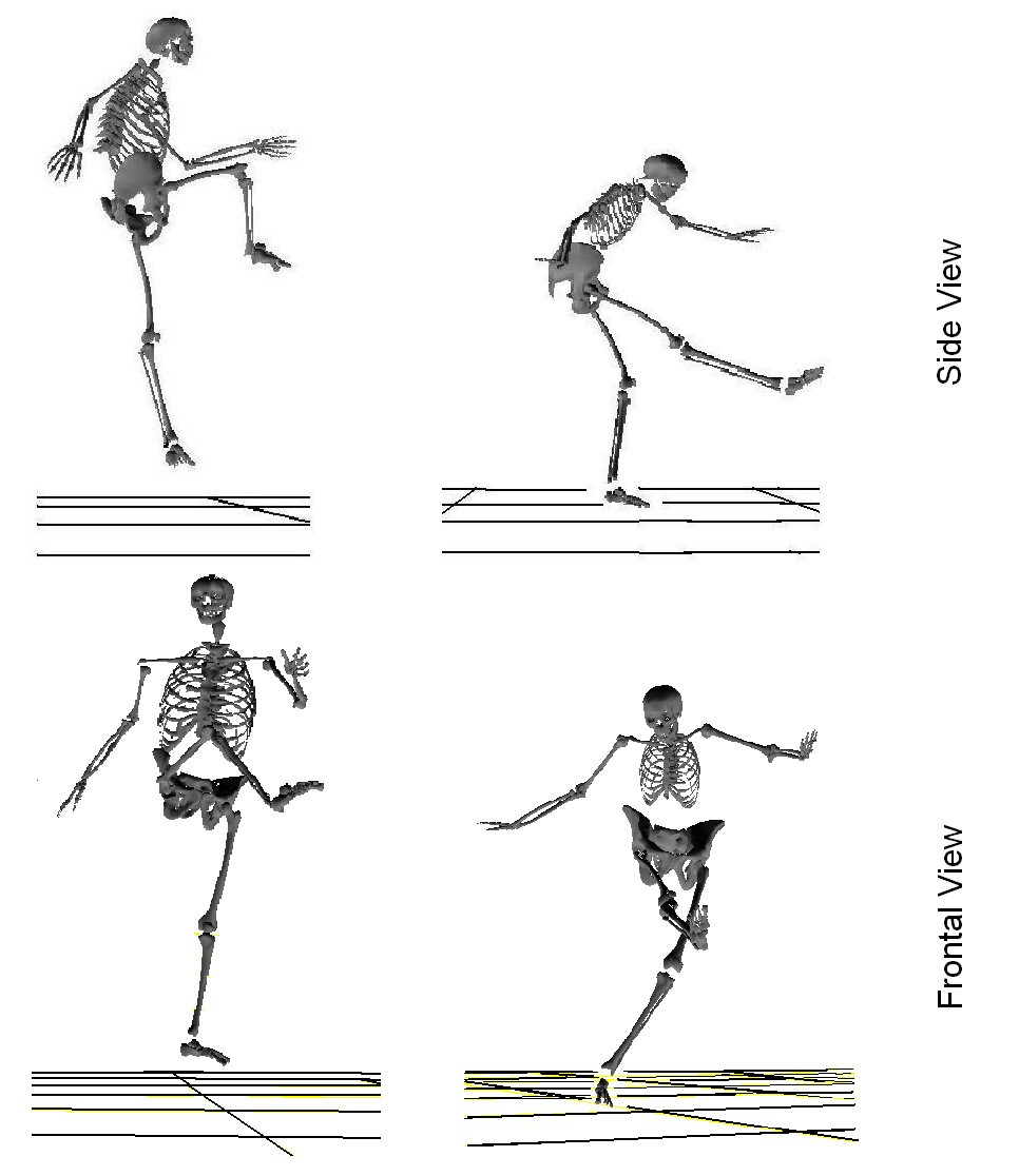 from 2d leg kinematics to 3d full