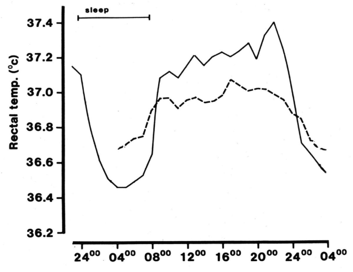 Daily Rhythms Of The Sleep Wake Cycle Journal Physiological 1999 Ford 4 6 Engine Diagram 204 Yr Figure 1